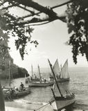 Sailboats in cove royalty free stock photo