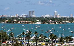 Sailboats de Miami Foto de Stock Royalty Free