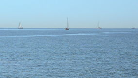 Sailboats And Diver stock video footage