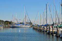 Sailboats at dock Stock Images