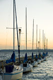 Sailboats docked at dusk Royalty Free Stock Photography