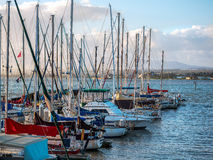 Sailboats Docked at a Marina in Hawaii Stock Image