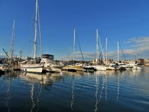 Sailboats docked at a marina. On a beautiful blue ocean and blue sky background stock photo