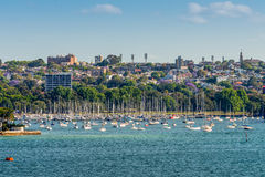 Sailboats at the Double Bay, New South Wales, Sydney Royalty Free Stock Photo