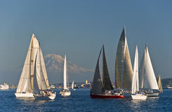 Sailboats in Elliot Bay Royalty Free Stock Images