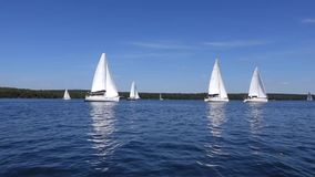 Sailboats floating in the clouds. stock video