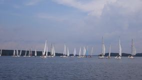 Sailboats floating in the clouds. stock footage