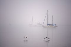 Sailboats in the Fog Royalty Free Stock Photography