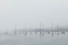 Sailboats on a foggy morning Stock Image