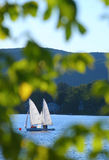 Sailboats framed by leaves Stock Image