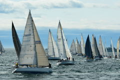 Sailboats getting ready for the start of the race. Stock Photos