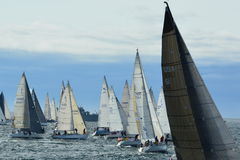 Sailboats getting ready for the start of the race. Stock Photo