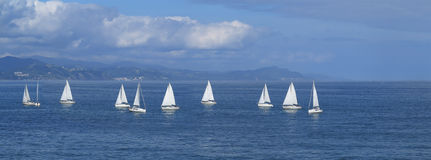 Sailboats in Gipuzkoa Royalty Free Stock Photo