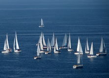 Sailboats. Group sailing on the blue sea Stock Images