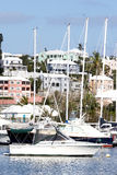 Sailboats in harbor. Scenic view of yachts and sailboats moored in harbor with waterfront buildings in background Royalty Free Stock Photo