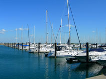 Sailboats in harbor. Sailboats aligned in Chicago harbor stock photo