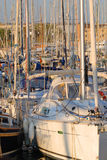 Sailboats in the Harbor. Many sailboats moored at docks in a harbor royalty free stock photography