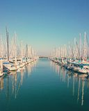 Sailboats in harbor Stock Images