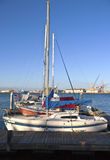 Sailboats in a harbor San Pedro California. Royalty Free Stock Image