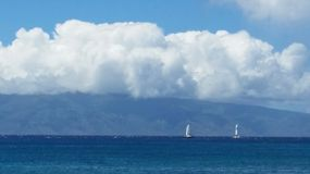 Sailboats in Hawaii Royalty Free Stock Image