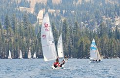 Sailboats in the High Sierra Regatta Royalty Free Stock Image