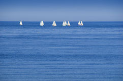 Sailboats on horizon. Sailboats racing on horizon with blue water and sky Stock Photo