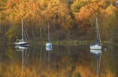 Sailboats on the Lake Royalty Free Stock Images