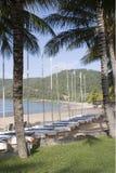 Sailboats line Hamilton Island beach. Hamilton Island hotel sailboats Royalty Free Stock Photography