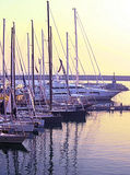 Sailboats at marina. Variety of sailboats and luxury yachts at a marina Stock Images