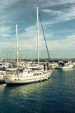 Sailboats in marina Stock Image