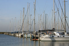 Sailboats in the marina Royalty Free Stock Image