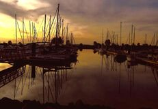 Sailboats in marina at sunset