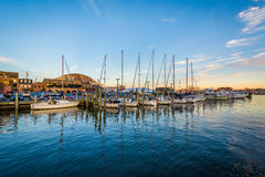 Sailboats in a marina at sunset, in Annapolis, Maryland. Stock Photography