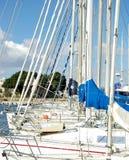 Sailboats at the marina Stock Image