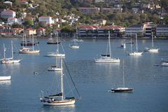 Sailboats Moored in Harbor Stock Images