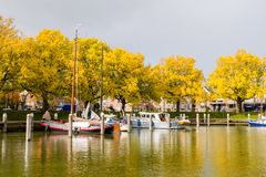 Sailboats at jetty in marina, trees in autumn colours and storm clouds, Enkhuizen, Netherlands. Sailboats moored at jetty in marina, trees in autumn colours and stock photo
