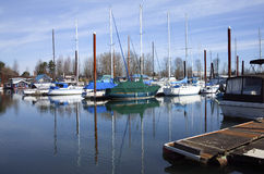 Sailboats moored in a marina, Portland OR. Stock Images