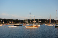 Sailboats moored in a sunny bay Stock Photography