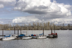 Sailboats moored on the Willamette river Oregon. Stock Photography