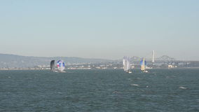 Sailboats near San Francisco stock video footage