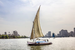 Sailboats on the Nile in Cairo in Egypt. Against the backdrop of buildings Royalty Free Stock Photography