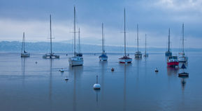 Sailboats no lago Genebra, Switzerland Imagem de Stock Royalty Free