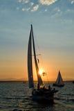 Sailboats no por do sol Fotografia de Stock