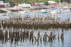Sailboats Past Old Wood Pilings Royalty Free Stock Photography