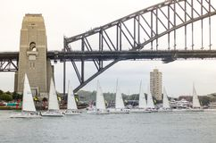 Sailboats performing ballet movement show in events on Australia day at Sydney Harbour. royalty free stock image