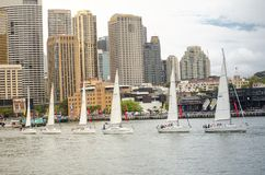 Sailboats performing ballet movement show in events on Australia day at Sydney Harbour. stock photography