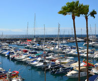 Sailboats in the port. Royalty Free Stock Photo