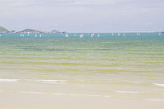 Sailboats practicing. In the sea Royalty Free Stock Photography