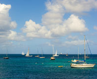 Sailboats preparing to race in the caribbean Stock Image