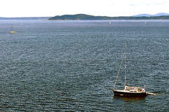 Sailboats in Puget Sound Stock Image